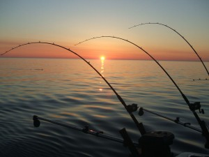 costa-rica-sports-fishing