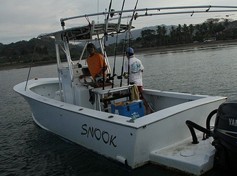 snook 28